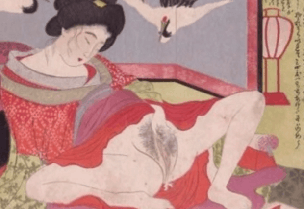 Japonské sex polštáře