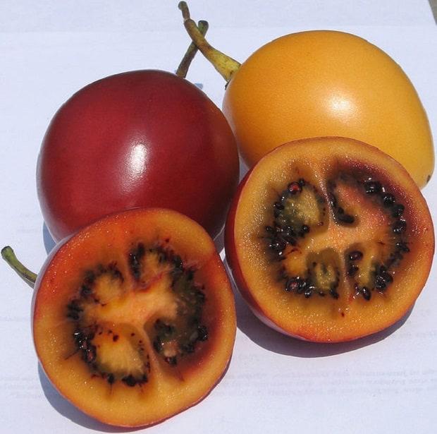 Tropické ovoce z Jižní Ameriky.