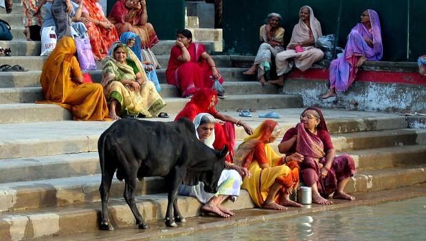 Indické sárí hýří všemi barvami.