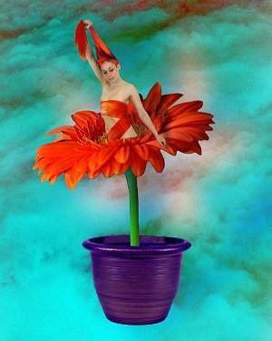 Květina udělá radost...