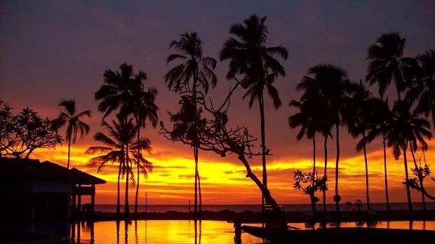 Palmy, moře, slunce, co víc si přát!