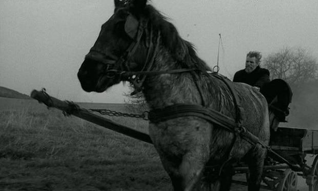 Člověk a kůň.