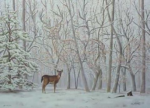 kde je jelen