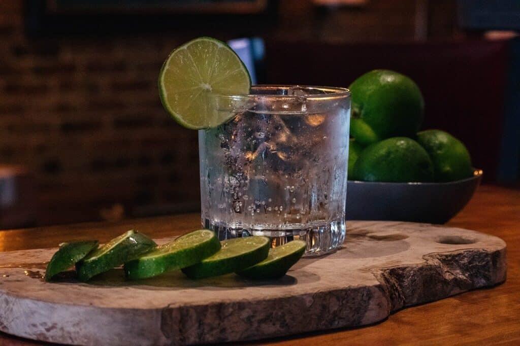 Hayman´s Gin Test a recenze